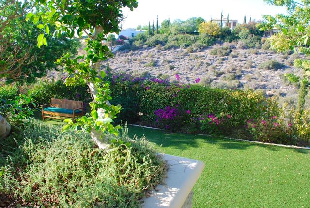 Villa 305 - Peeking into the garden from the pool terrace. Aphrodite Hills Resort, Cyprus.