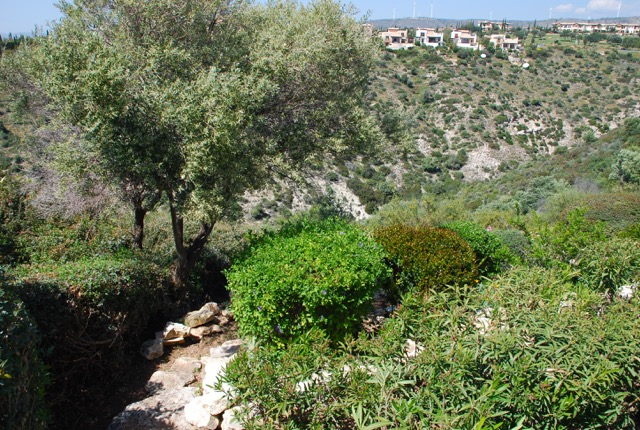 Villa 122 - Pretty, lower level garden. Aphrodite Hills Resort, Cyprus.