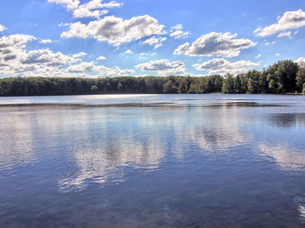 Four Seasons on Bass Lake