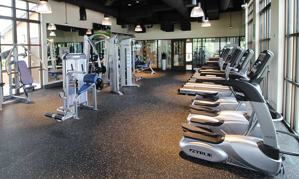Wide Choice of Excercise Machines