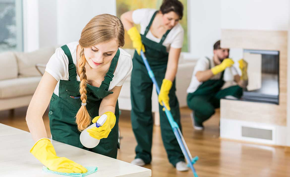 cleaners cleaning house