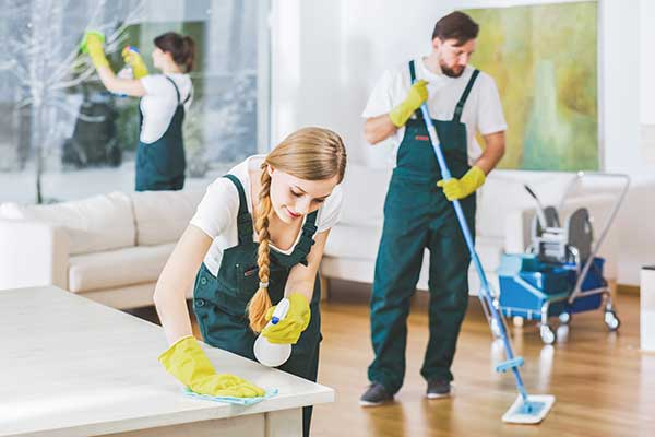 Property Cleans