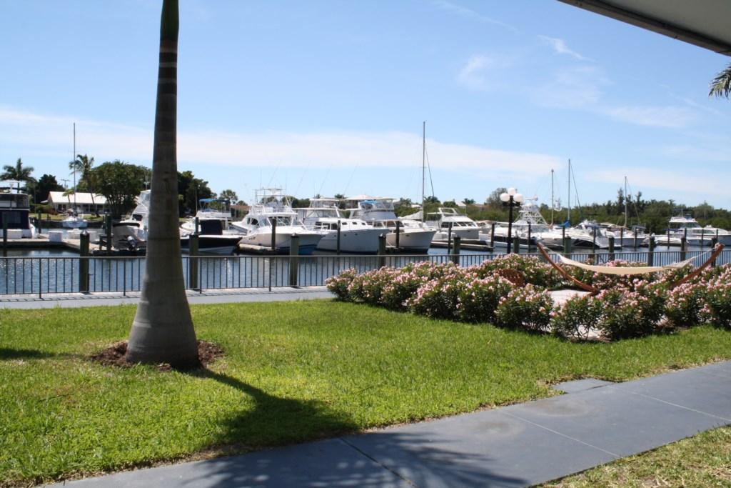 Marina and dock.