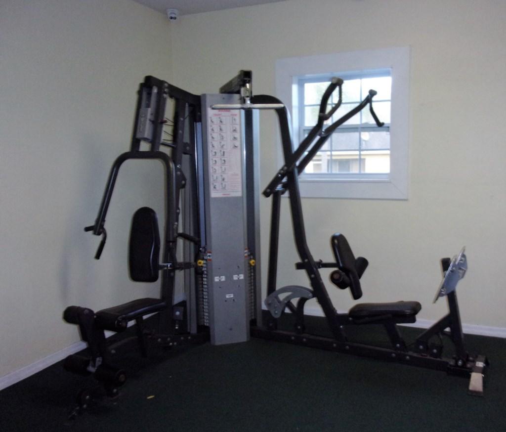 GP fitness