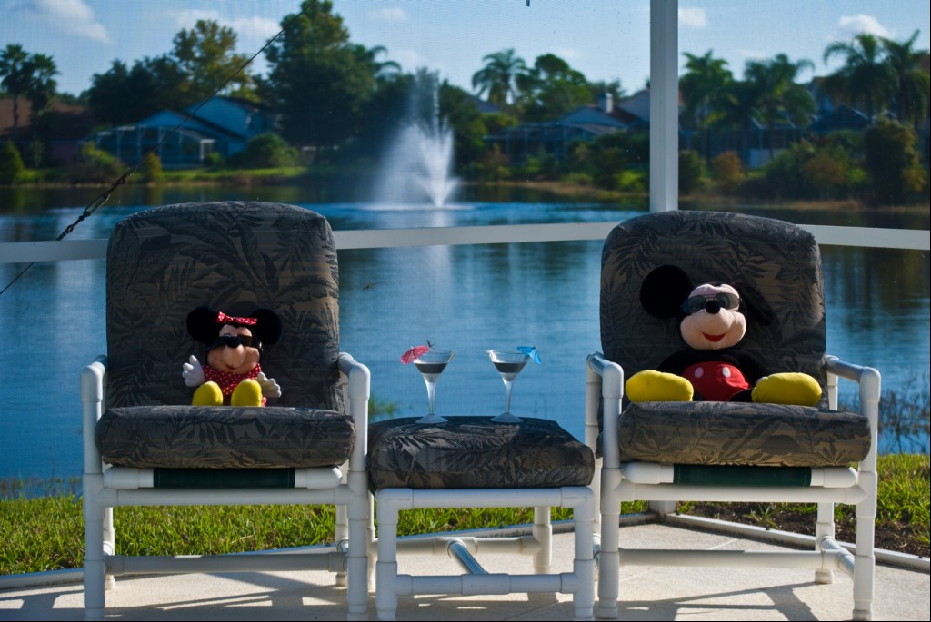 Two of or regular visitors enjoying the Florida sun