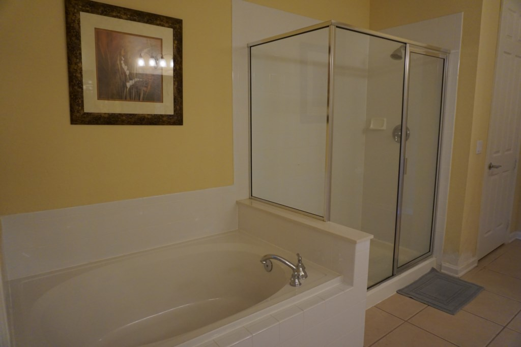 Master Bathroom - Walk in shower and separate tub
