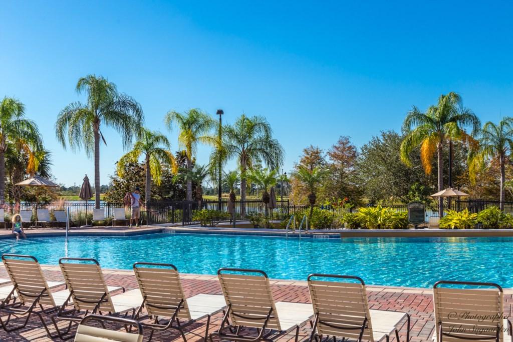 Sun beds at pool.jpg