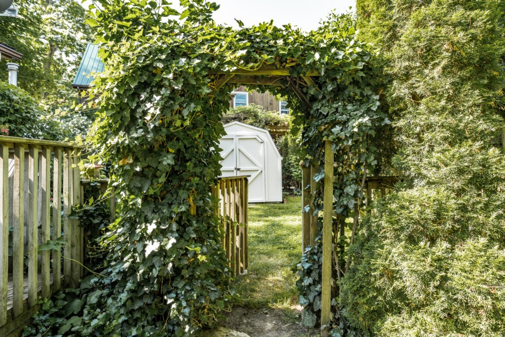 Fenced back yard - Dreamweaver Cottage - Niagara-on-the-Lake