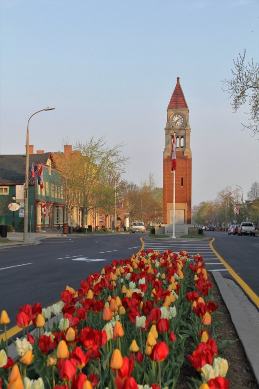 Spring tulips and clock tower on Queen - Niagara-on-the-Lake