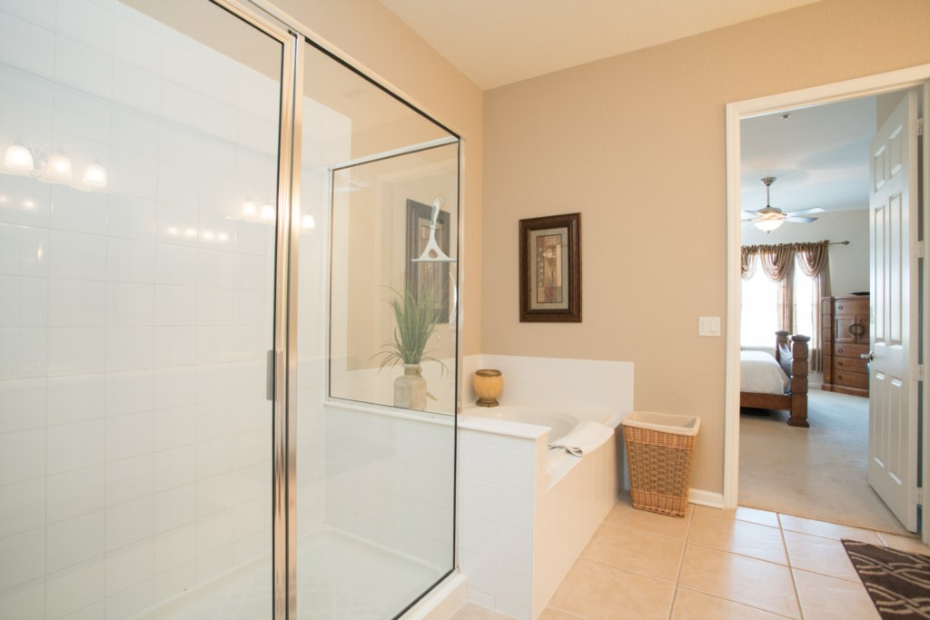 Separate Large Tub and Walk In Shower in Master Bath
