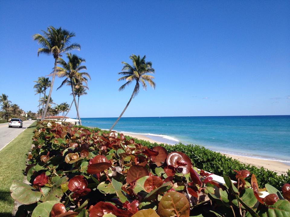 Scenic Route up A1A