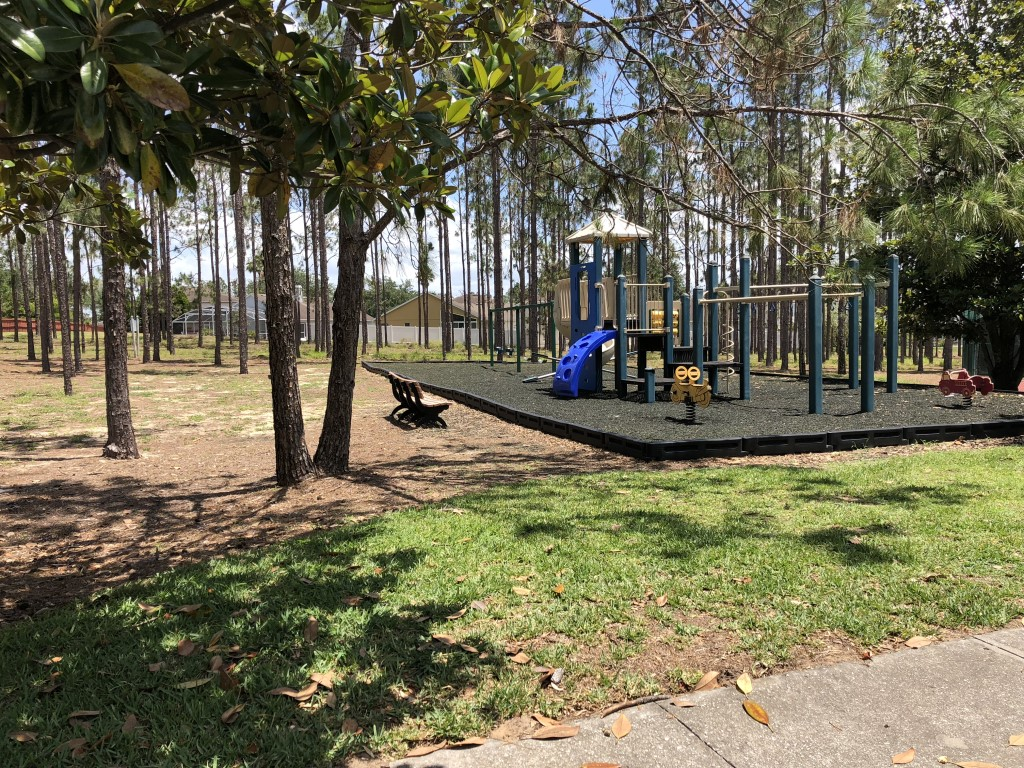 Swings & Children's Playground