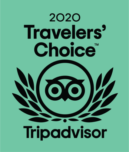 You're-a-2020-Travelers'-Choice-Award-Winner1-426x500.png
