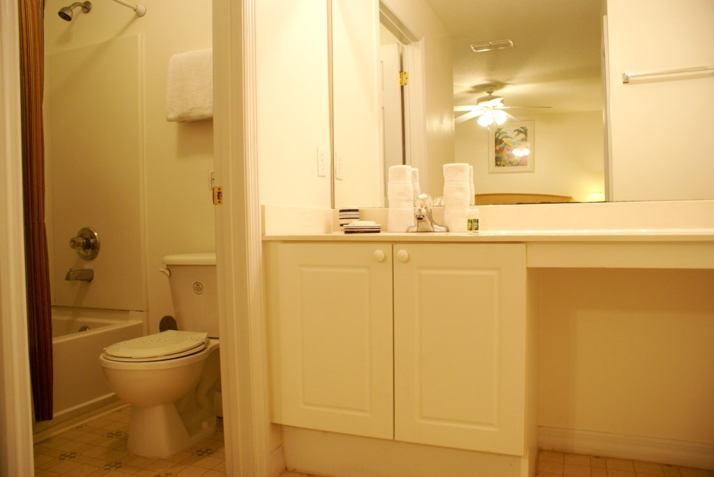 ModernBathroomFloridaRental