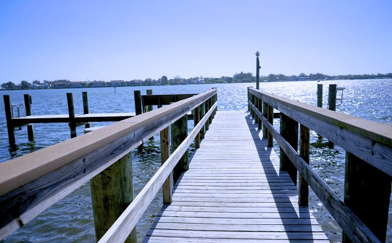 The dock the dolphins love to hangout at