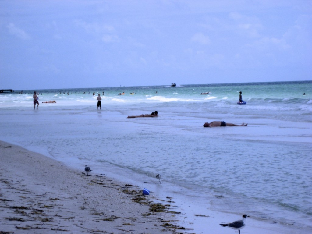 Anna Maria Island - Sunlover's Paradise