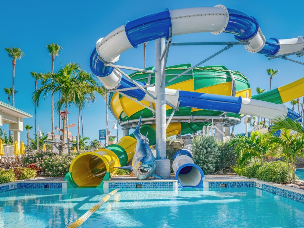 Slide down with a twist of fun!