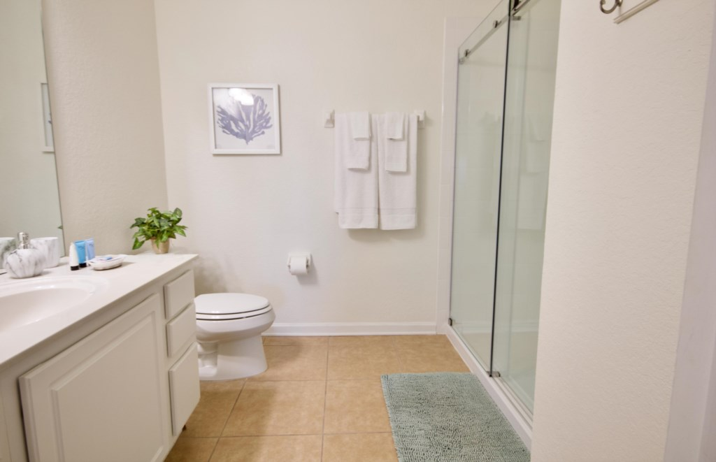 remodeled guest bathroom with large w/in shower