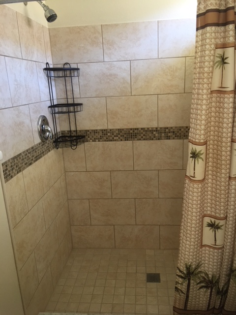 Master-ensuite-Walk-in-shower