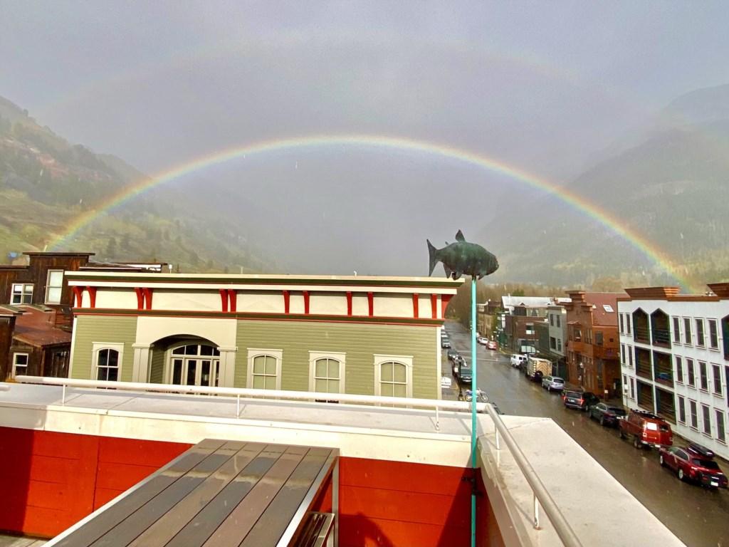 DT3 Rainbow.jpg