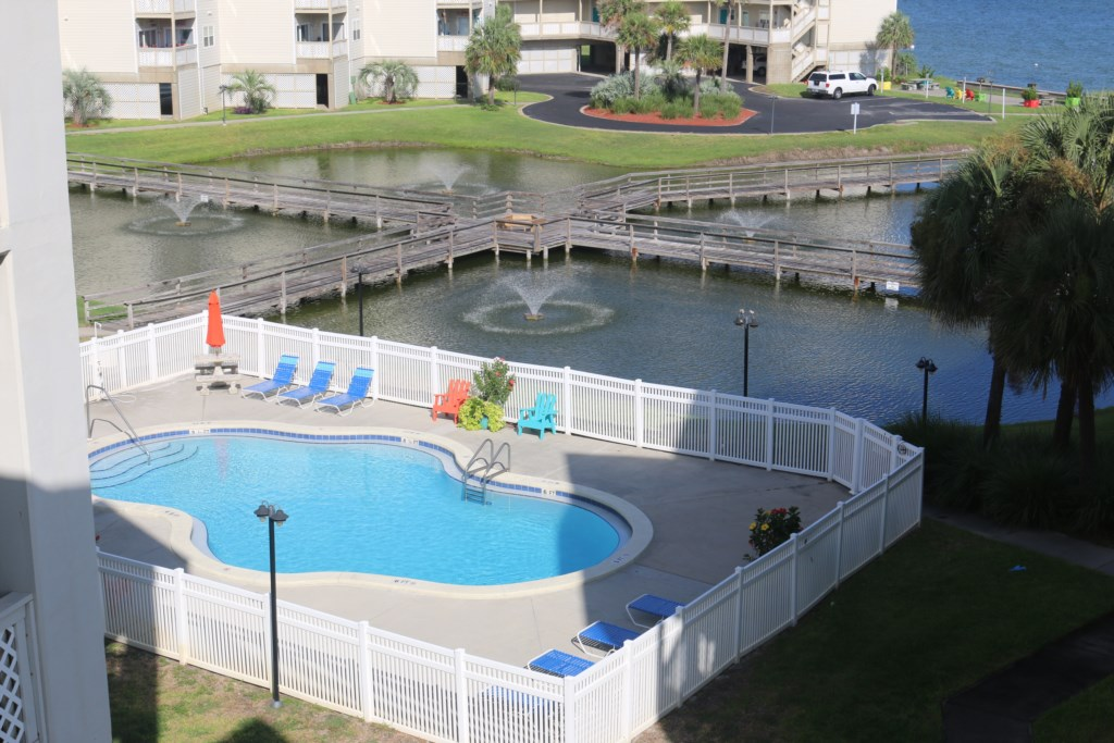 Baywatch pool and pond
