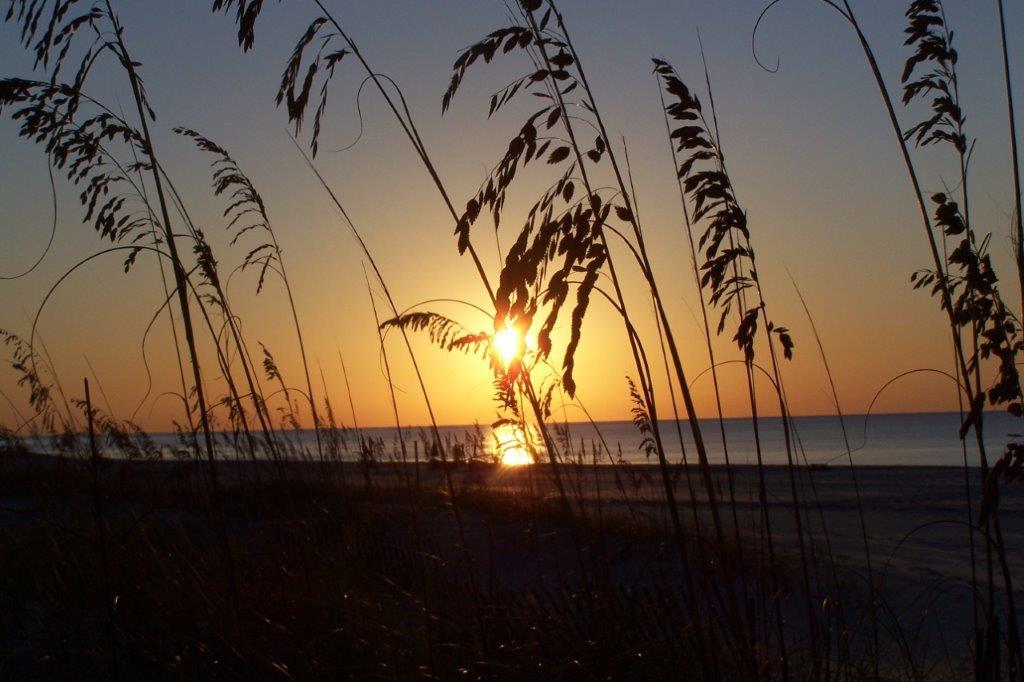 Sunset Beachside.jpg