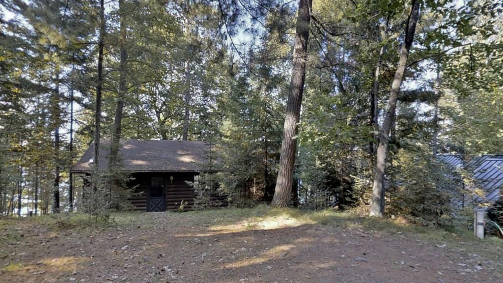 Cabin-trees.jpg