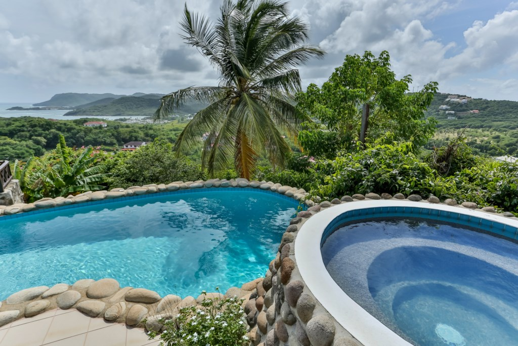 Plunge pool and larger pool with great views.