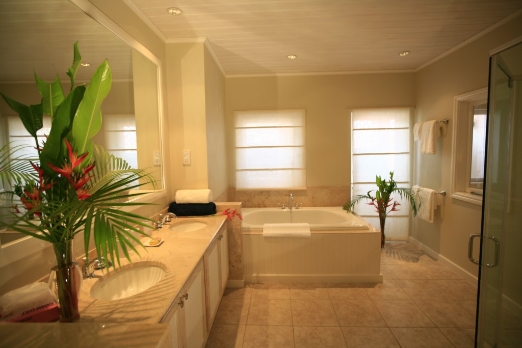 Master bathrooom with soaking tub