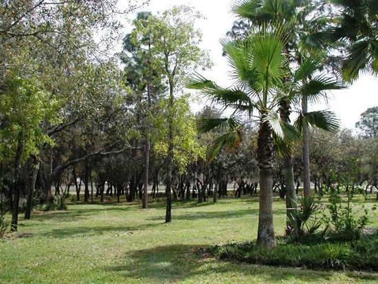 large_VillasKissimmeeAlices-Wonderland16---Garden-in-Indian-Ridge-Oaks-Community8O2P3P.jpg
