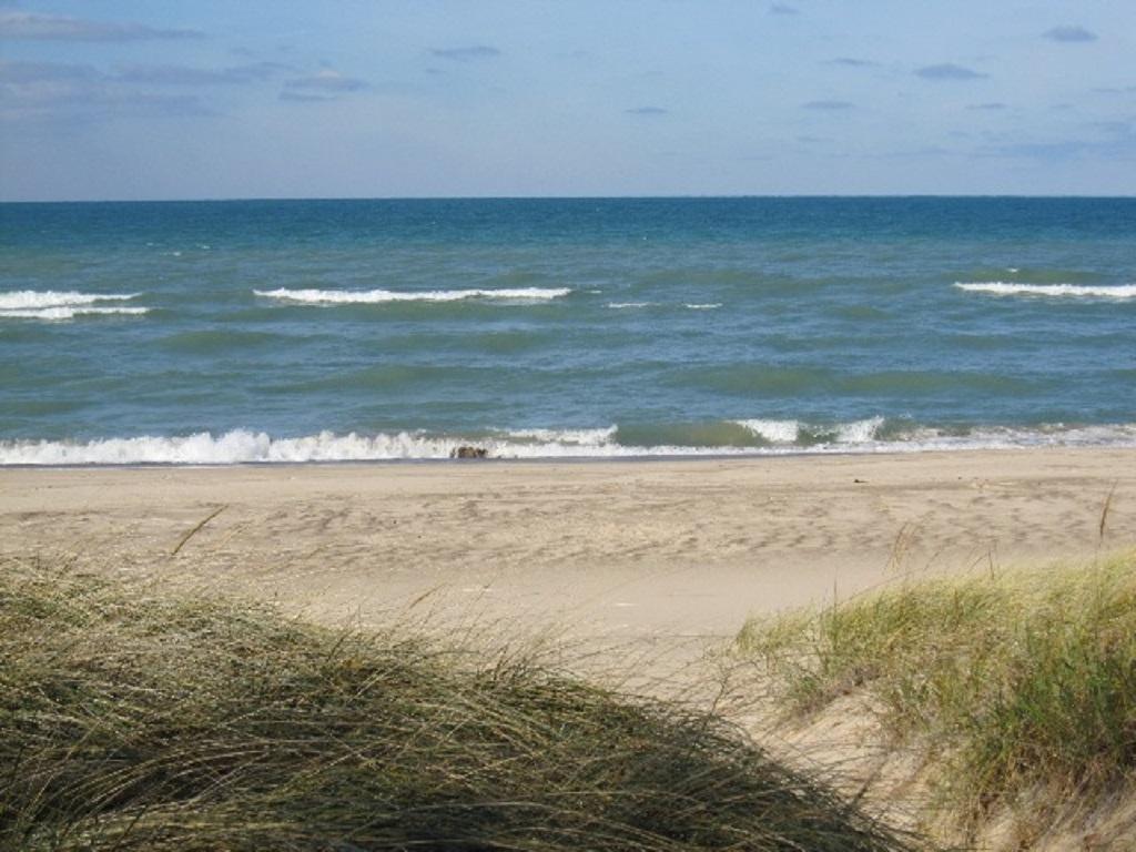 Gowdy Shores 6.JPG