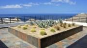 Ventana-Al-Cielo-Cactus-Garden.jpg