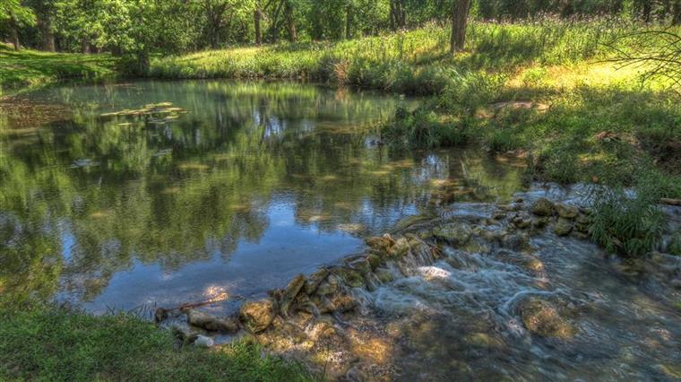 The Beautiful Frio Springs