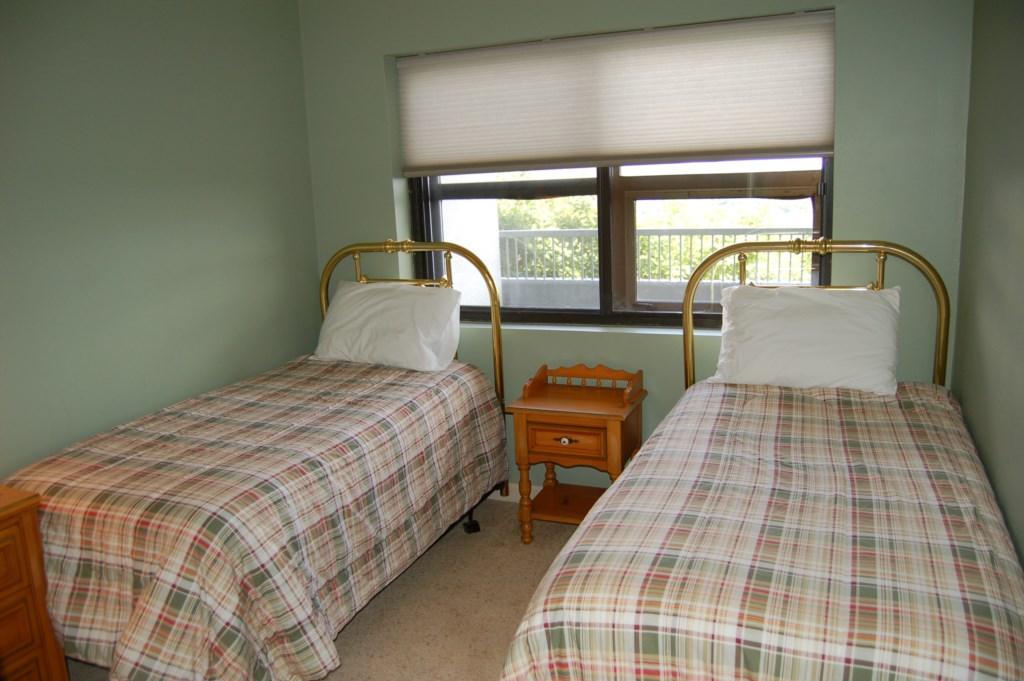 Guest Bedroom/ 2 Twins