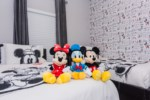 Mickey Bedroom First Floor 3.jpg