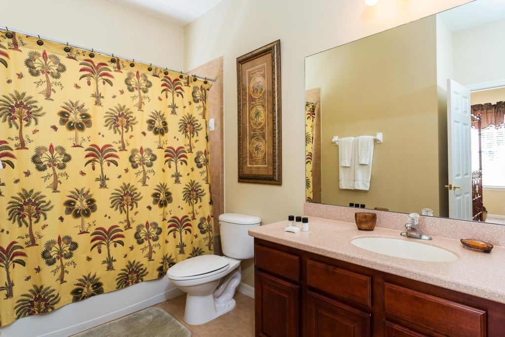 Downstairs suite 5 private bathroom features a bathtub & shower and hall access