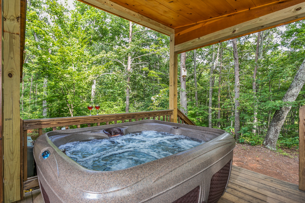 Relax iin the Hot Tub & enjoy the scenery of the Blue Ridge Mountains