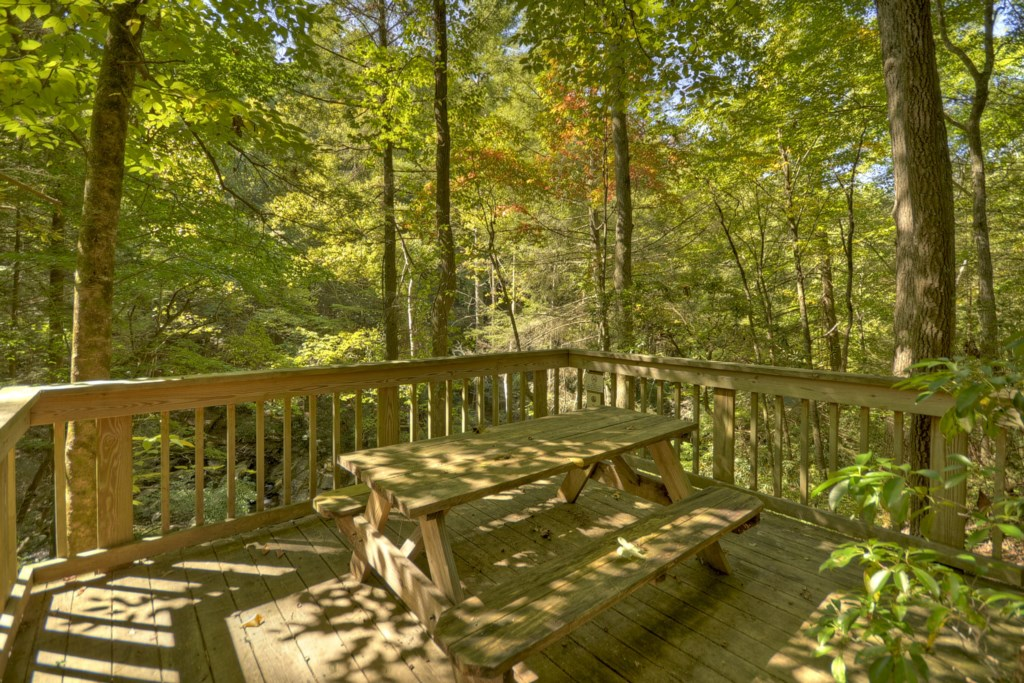 Enjoy a picnic lunch overlooking the Creek