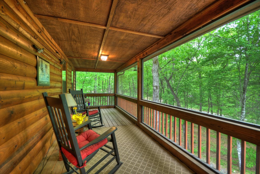 Relax and enjoy the view and  nature in your screened in porch