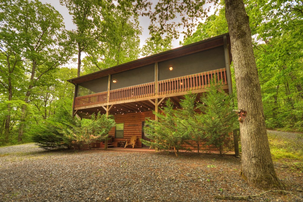 'The screened porch was a great place to sit back, relax, read, and admire nature' - Review Savica
