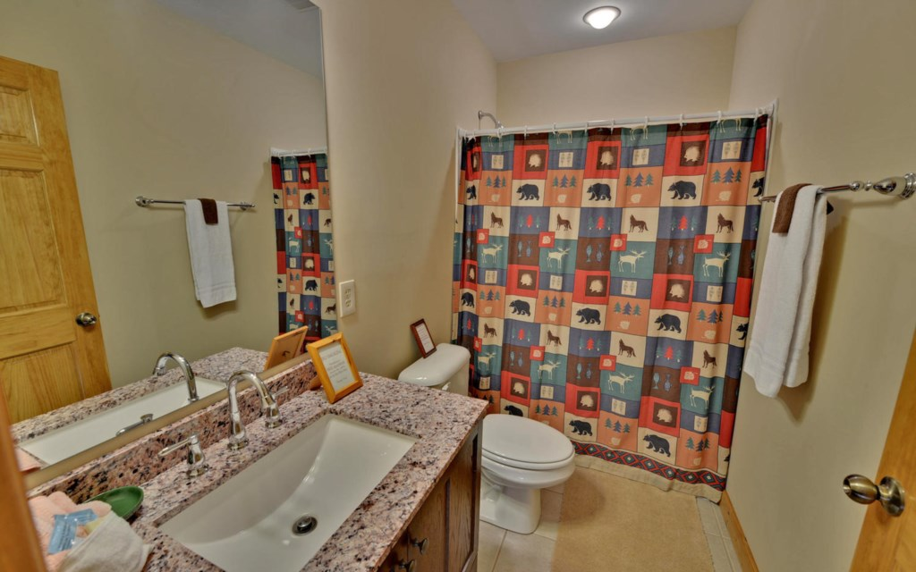 Full bath with shower in Terrace Level bathroom