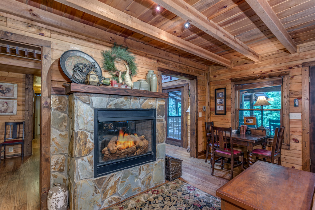 Seasonal double sided gas logs in Living room/Dining room