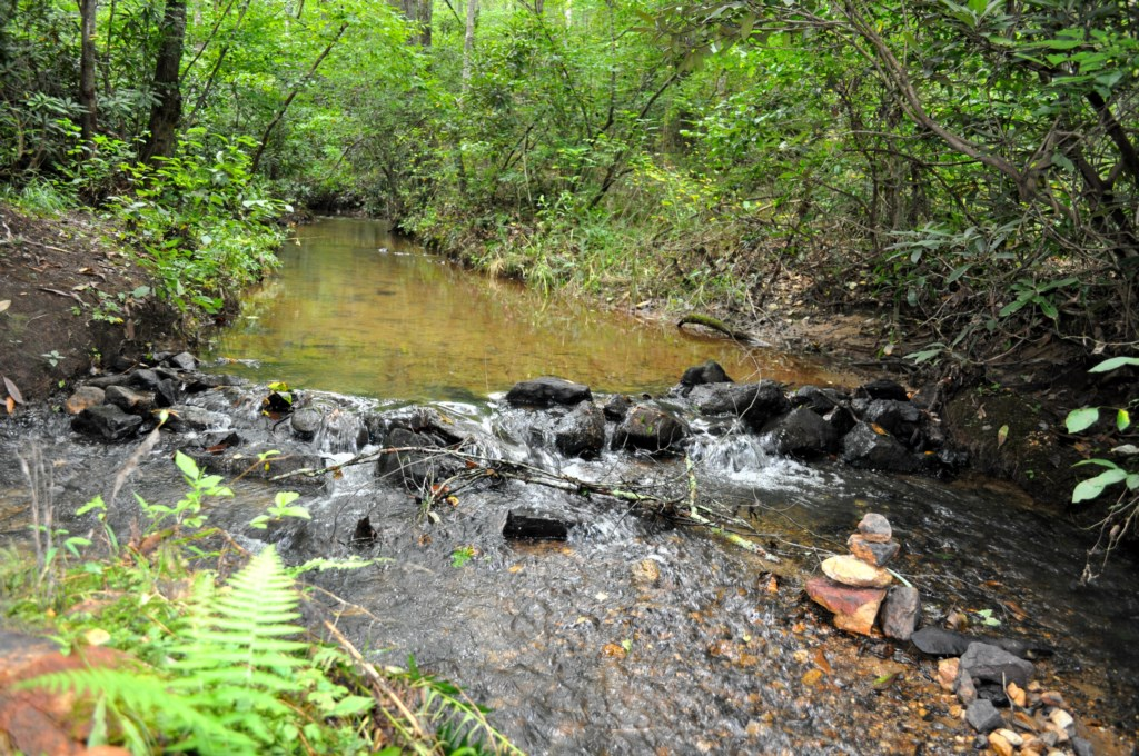 Listen to the serene sounds of the flowing creek