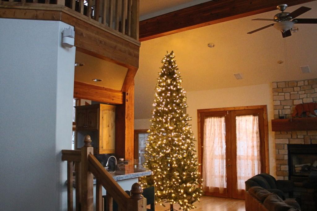 Christmas Tree provided