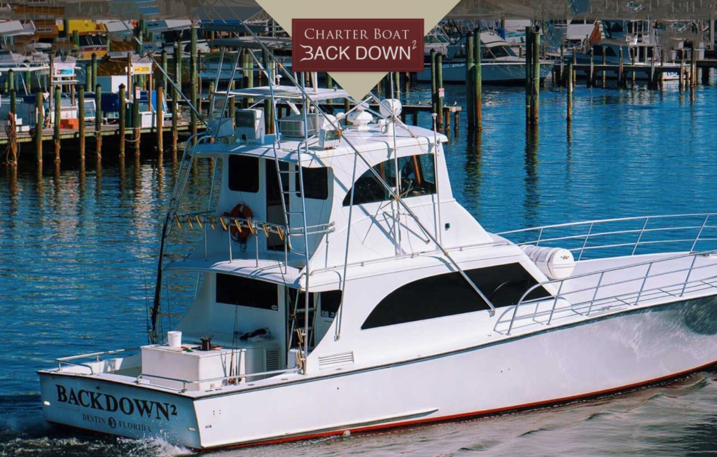 Charter Boats Available all Year For Fishing