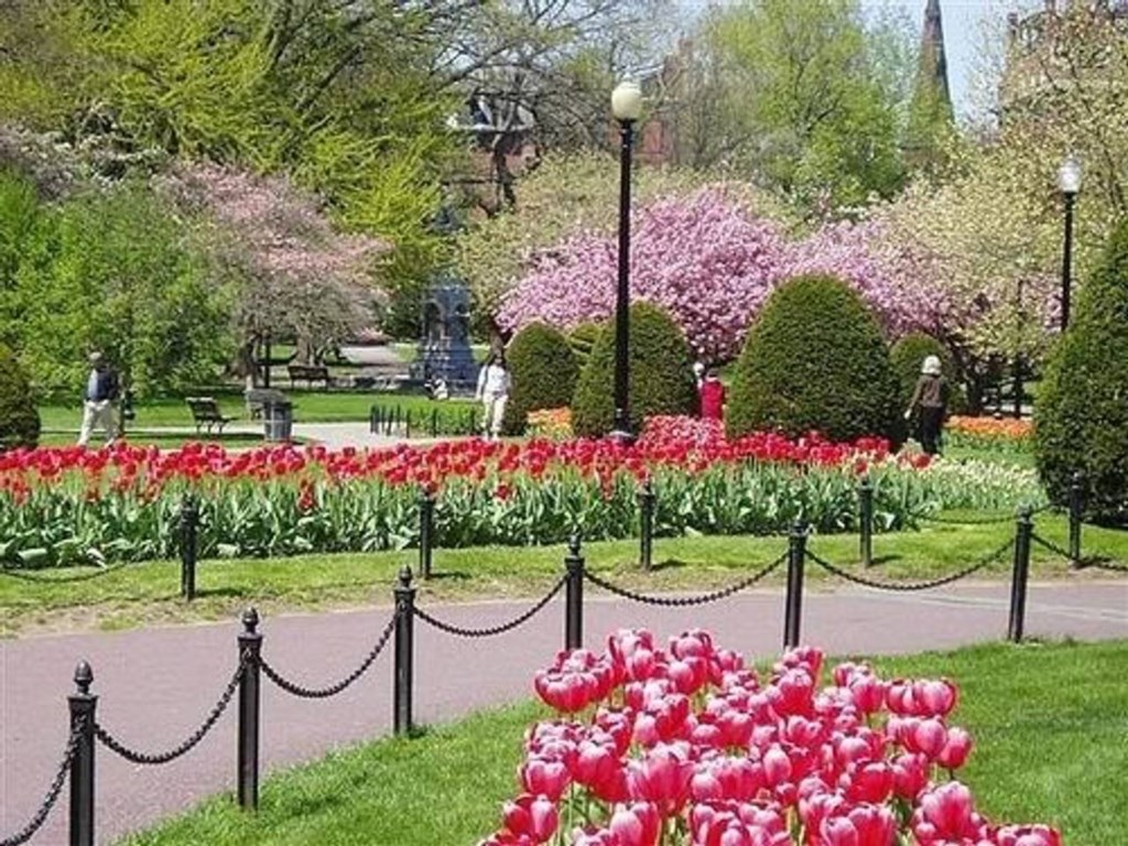 And the public gardens are breathtaking in spring...