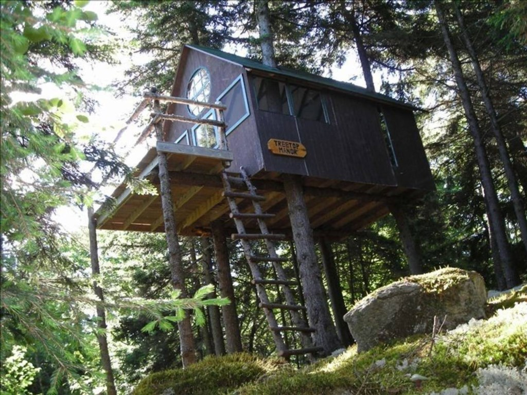 The secret treehouse is tucked away in the woods behind the main house