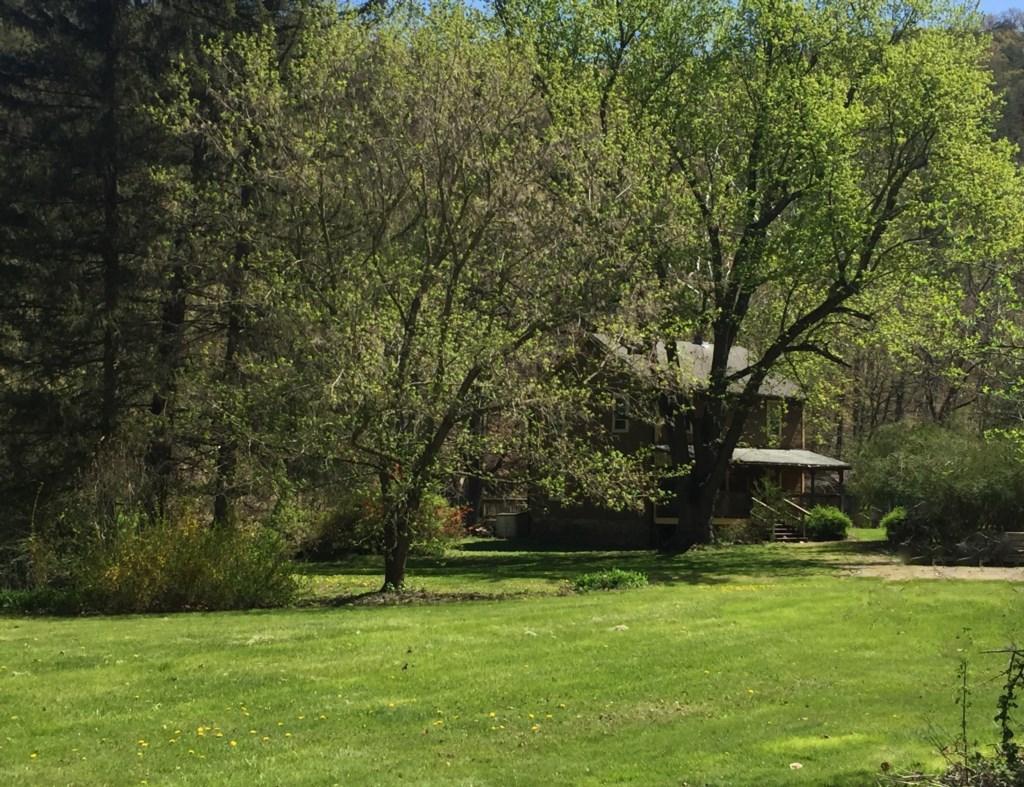 Lady Bug Lodge-Creek-side Getaway, Pet Friendly