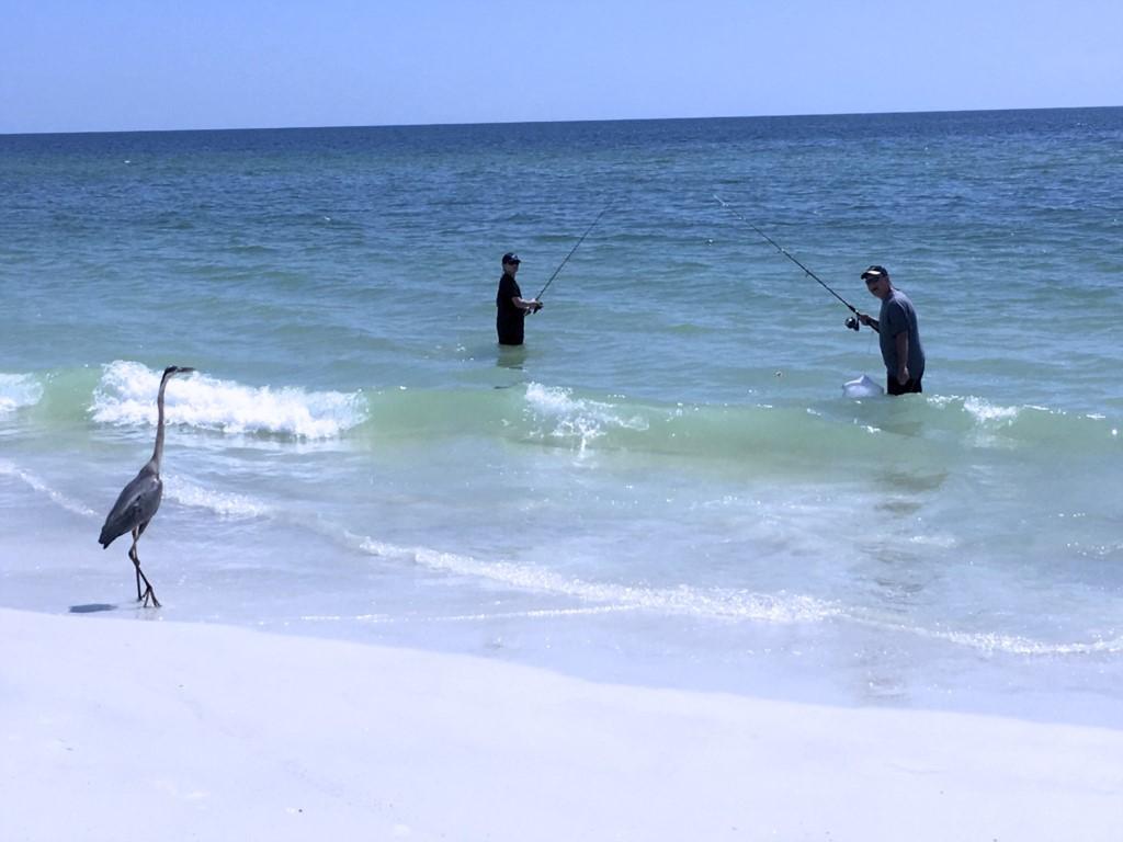 Fishing in the Gulf