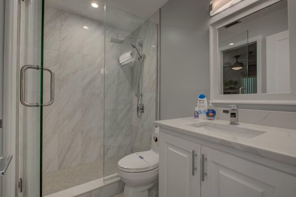 New Walk-In Shower-Quartz Counter Tops